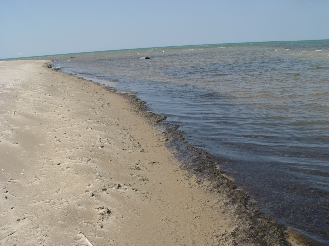 ThumbWind.com is Tracking MUCK Incidents on the Great Lakes