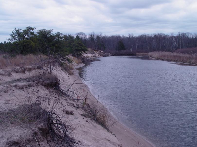 Port Cresent State Park River Bank