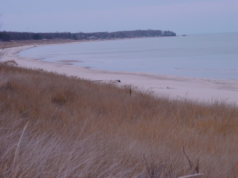 Port Cresent State Park Beach South
