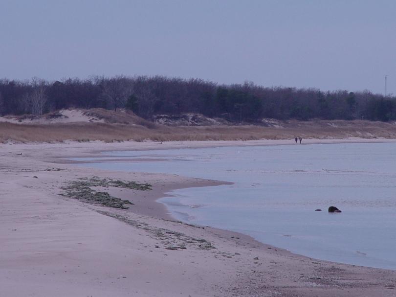 Port Cresent State Park Beach South II