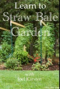 straw bale book