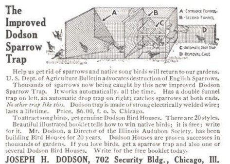 The_Improved_Dodson_Sparrow_Trap_-_1915