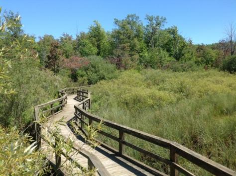 Huron Co Nature Center