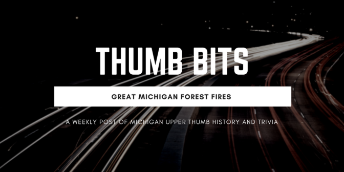 The Great Michigan Forest Fires 1881