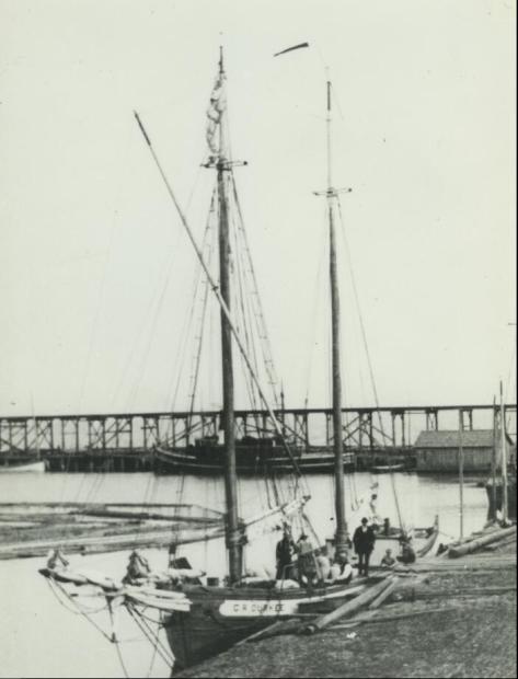 Drukee Sebewaing Docs 1887